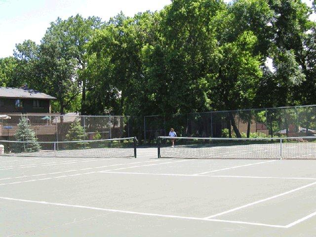 Need some action?  Visit the tennis court!