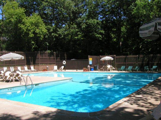 Take a cool dip in our pool!